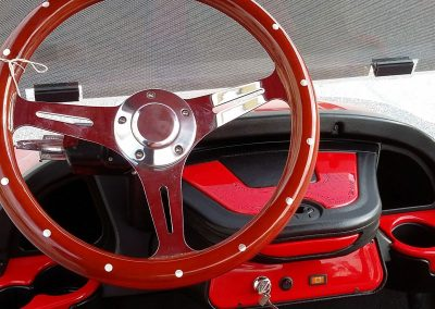 Parrot Dash and Steering Wheel